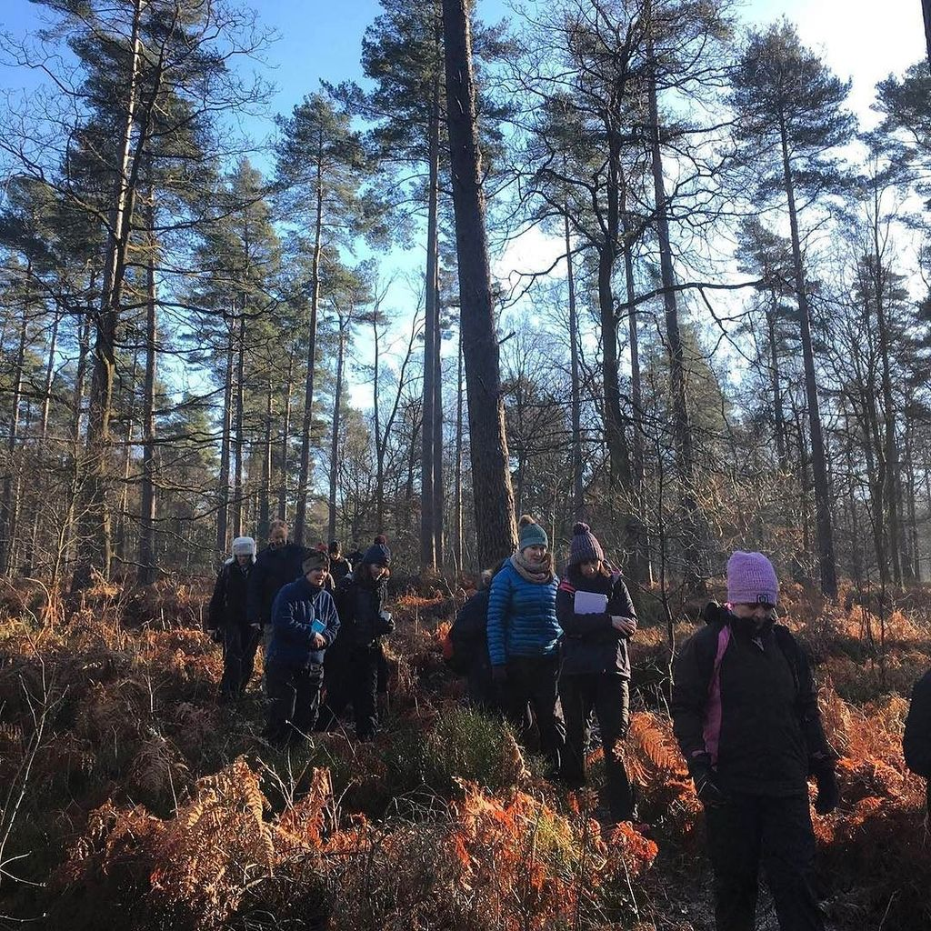 Forest Schools training like no other - #ForestSchool #OutdoorLearning #Outdoors #Woodland  http:// ift.tt/2m0ePmn  &nbsp;  <br>http://pic.twitter.com/TP4jznivr2