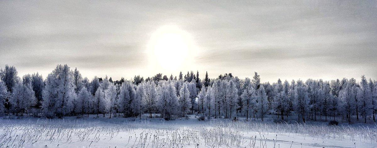 Nice weather. #kuusamo #pakkanen #suininki #finland #winter<br>http://pic.twitter.com/ngUmXlr6e6
