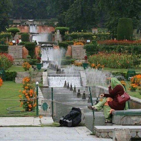 famous Mughal Gardens on the banks of #Dallake #srinagar #kashmir #kas...