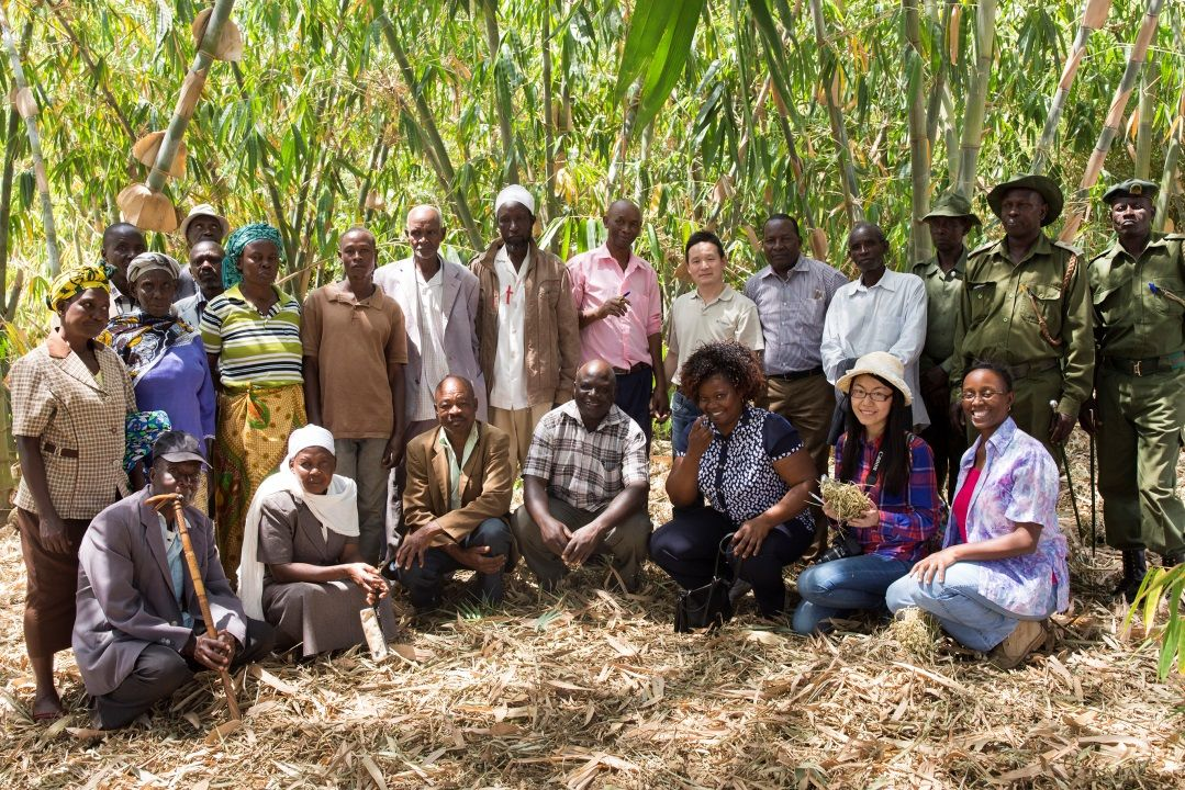 Mapping #bamboo forest resources in East Africa:  http:// bit.ly/2kMXHig  &nbsp;    #Forests #Trees #Agroforestry @INBARofficial<br>http://pic.twitter.com/gT6d96AbgV