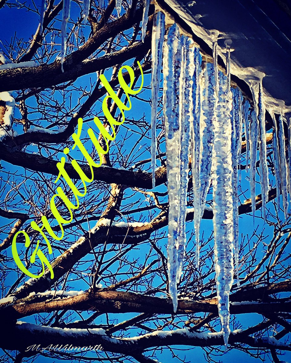 What are you #GRATEFUL for? This #year #Week #Moment #GRATITUDE #winter #snow  #icicles #trees #sunshine  #massoutdoors @Back2backPT<br>http://pic.twitter.com/LY1Yf1ydAR