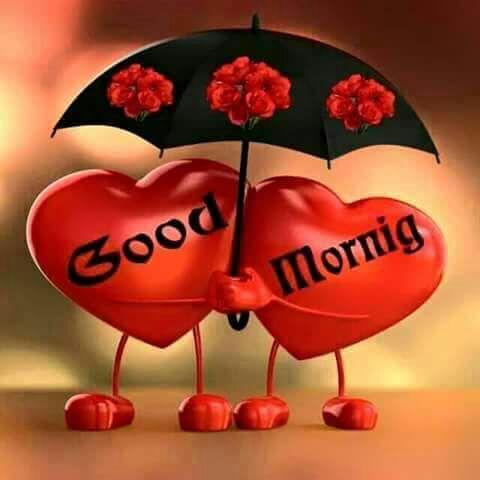 Kausar Rana Uk On Twitter Aslam O Alikum Lovely Good Morning To