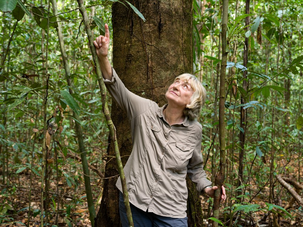 #nowreading A tribute to Dr Sandra Brown: &#39;Can you imagine a world without #forests?&#39;  http:// bit.ly/2lcH4Ql  &nbsp;    via @WinrockIntl<br>http://pic.twitter.com/yalpQF2rKW