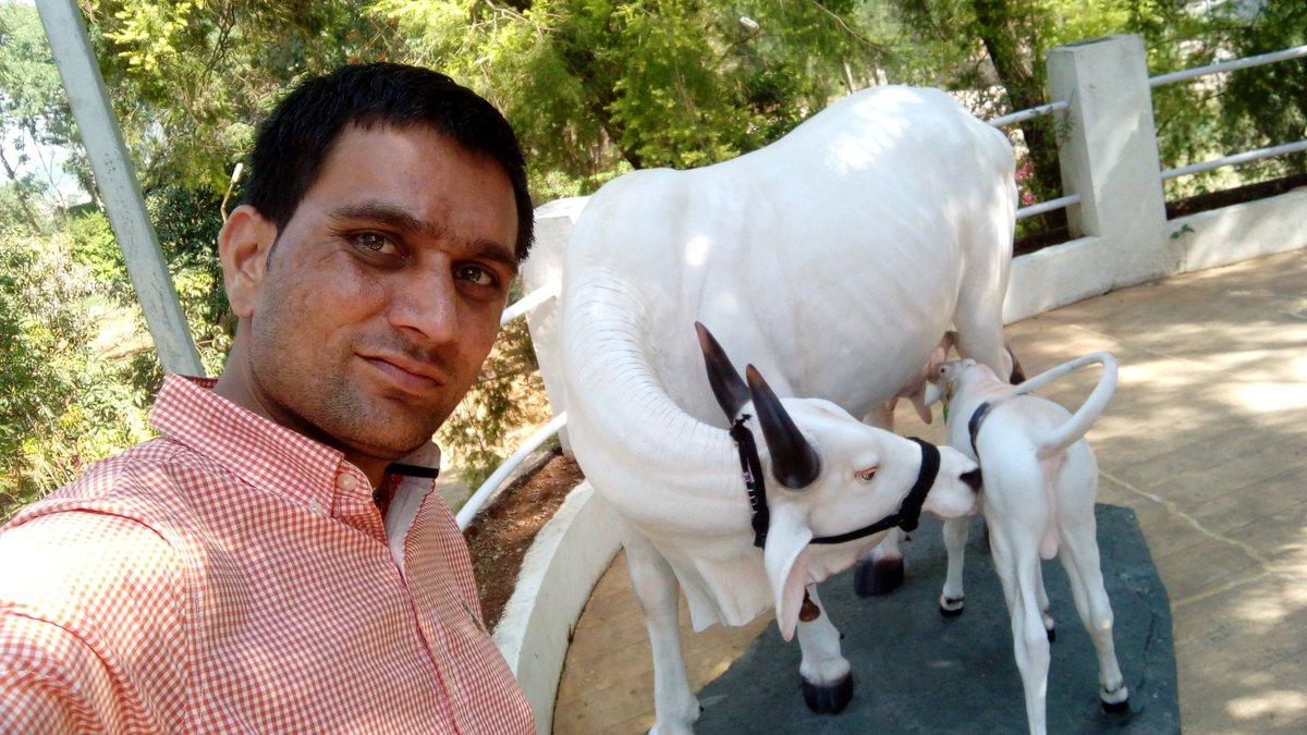 33   Cool dharmendra for Dharmendra Farmhouse  268zmd
