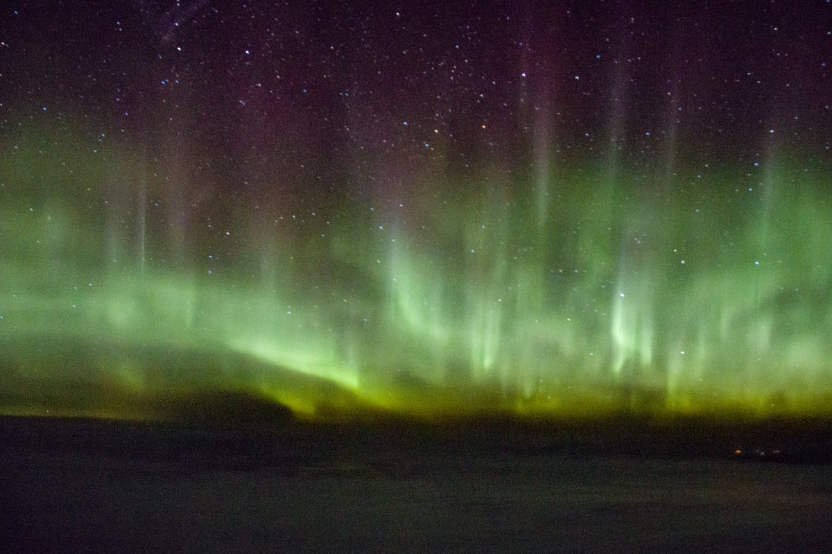 Fantastic views of the #NorthernLights on our way back from LA the other night! Thanks @NorthLightAlert for updates! #Aurora #AuroraBorealis <br>http://pic.twitter.com/pLauntZWzC