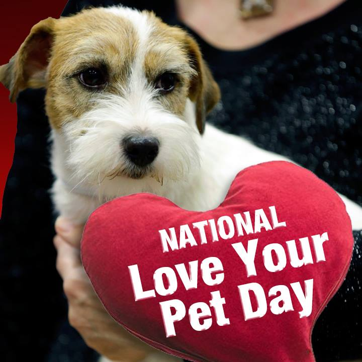 Give your pet some extra tender loving care today. #NationalLoveYourPe...