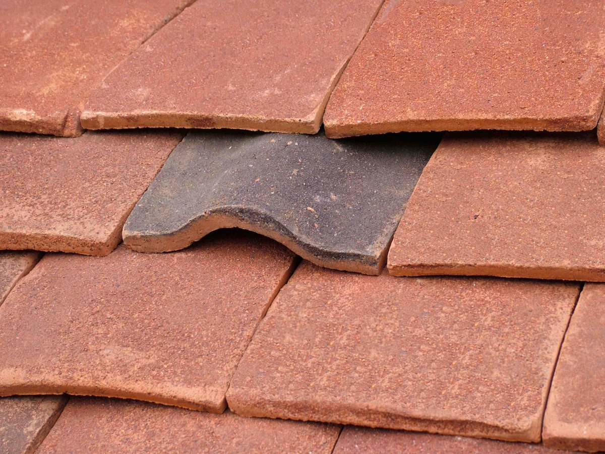 Tudor Roof Tiles Bat Access