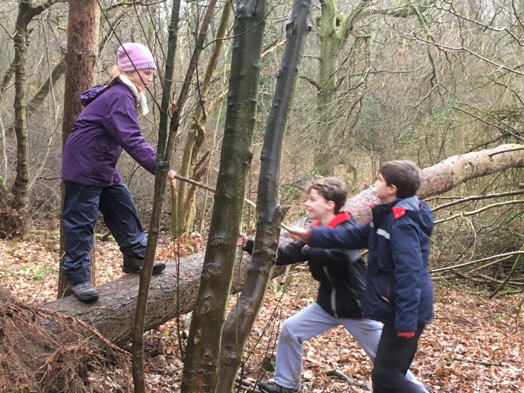 Seeing off woodland invaders at Ilkley #forestschool today. @BfdForestSchls @FSAForestSchool with @ForestClassroom<br>http://pic.twitter.com/K1NSODMpwL