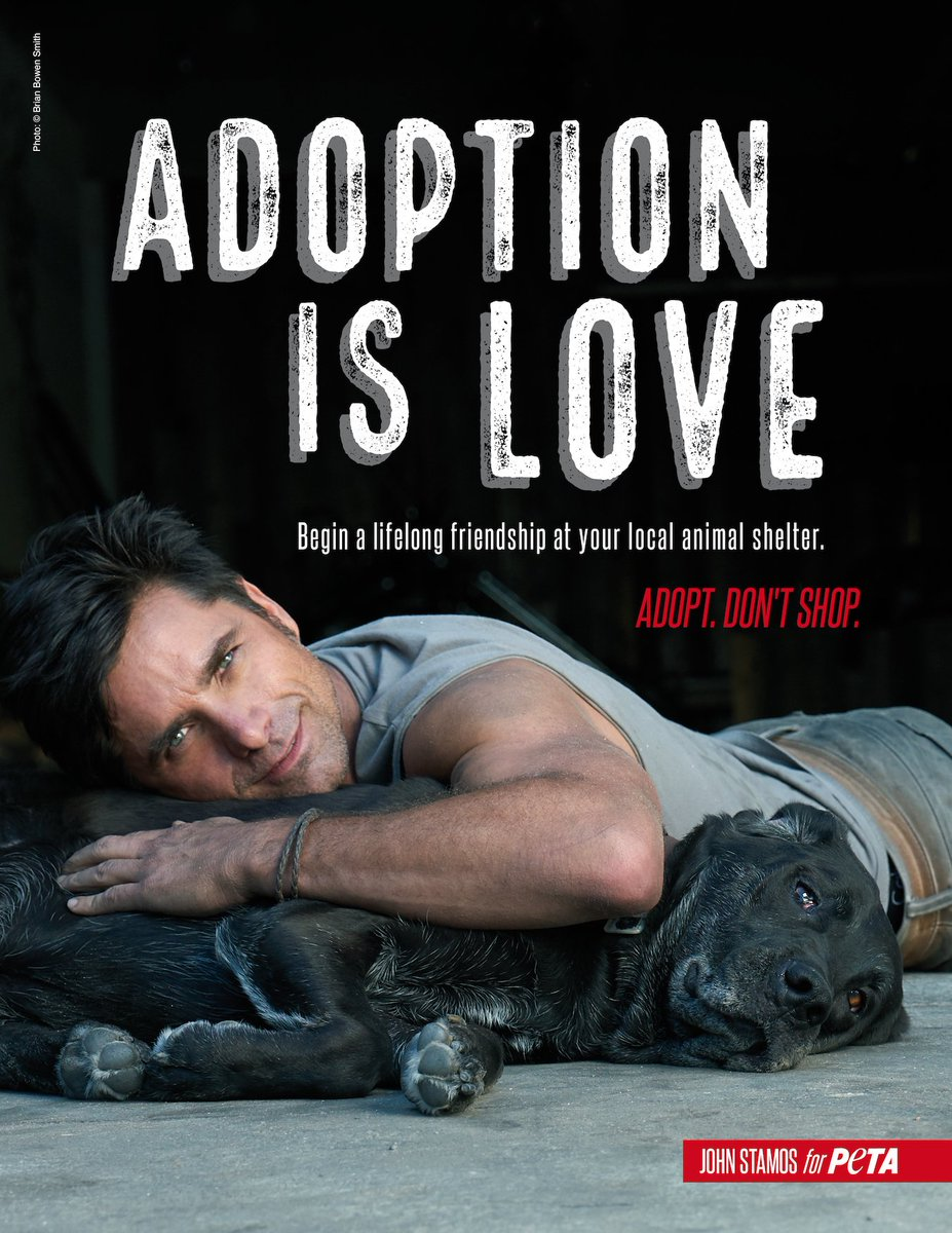 Who could say no to @JohnStamos? 😍 When adding a dog to your family, a...