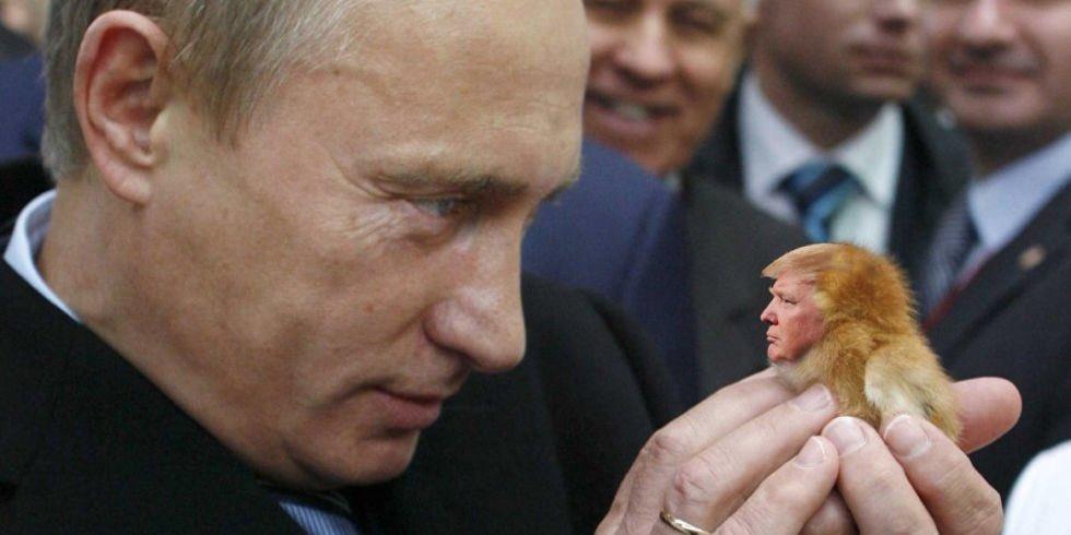 Even @Russia&#39;s President #VladimirPutin celebrates #NationalLoveYourPetDay!  #MAGA #TrumpRussia<br>http://pic.twitter.com/vjTjCTmkaG