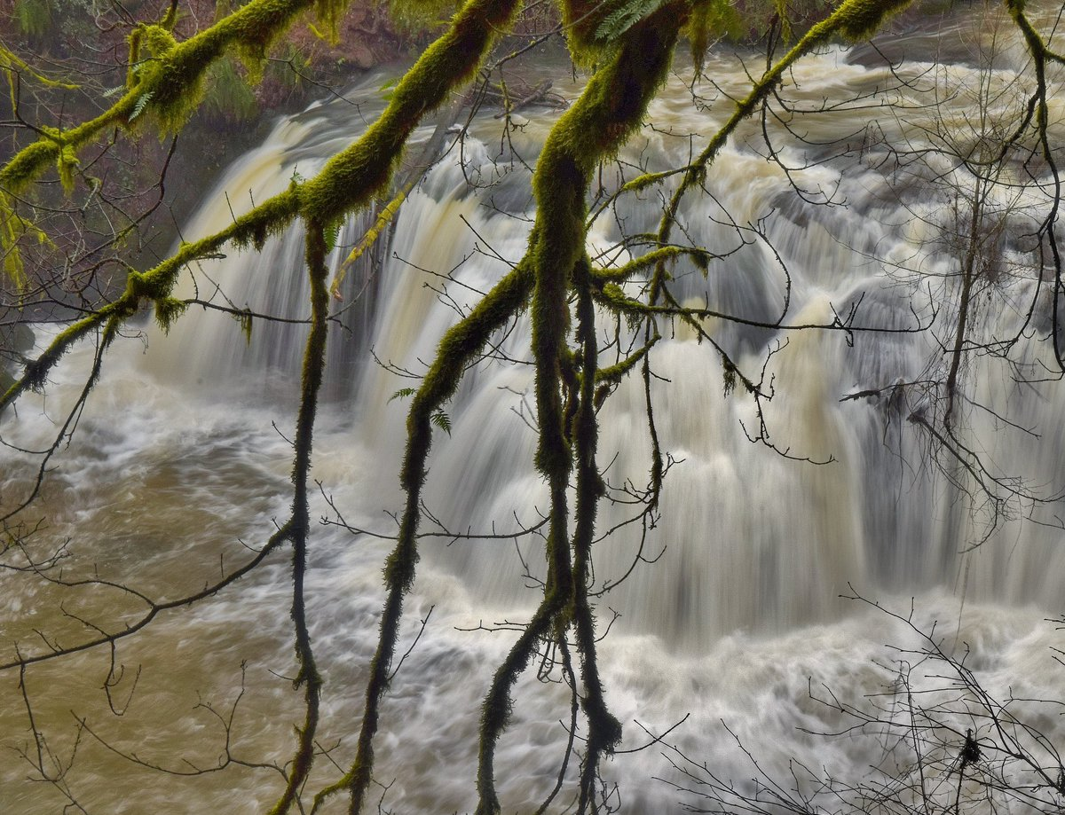 WOW! Lacamas Creek raging over Lower Falls in Camas this afternoon. Lots of water out there! #LiveOnK2 #pdxtst <br>http://pic.twitter.com/bxwEmQ79iG