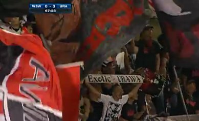 Exotic? Well, I guess compared to Campbelltown... #WSWvURA https://t.c...