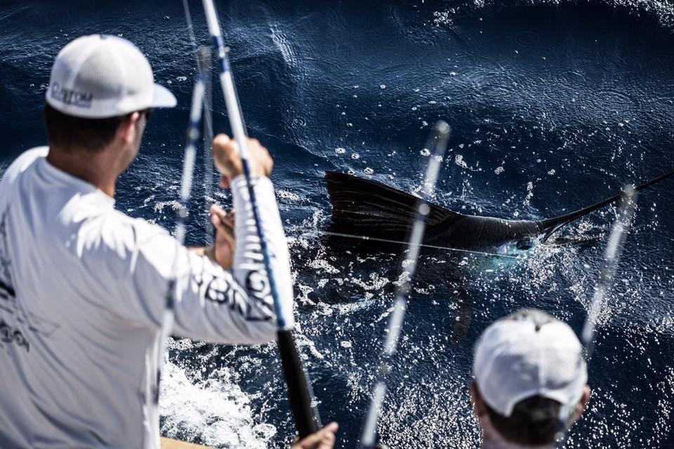 Los Suenos, CR - Big Oh went 27-33 on Sailfish.