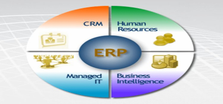 an investigation of customization in erp