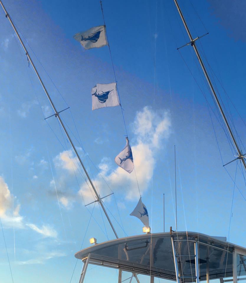 Palm Beach, FL - Osprey released 4 Sailfish.