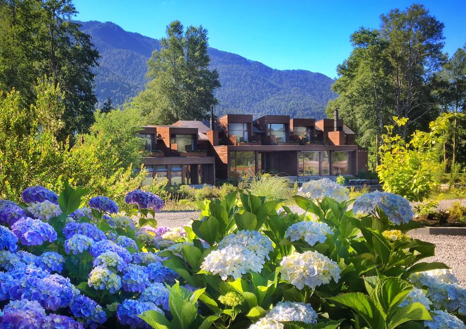 Waking up in an ocean of azure skies and matching hydrangeas - what promise for a new day in#Pucon #Chile  @LuxuryTravelAU