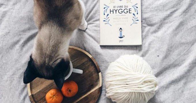 Quels sont les points communs entre le hygge et le DIY?