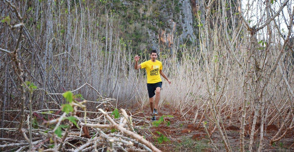 Combien de fois par semaine faut-il courir pour progresser ?@RunningAddictFr t&#39;explique tout!   http:// buff.ly/2lC9ODi  &nbsp;   #running #tips #sport<br>http://pic.twitter.com/MGH0zDVxnm