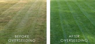 What is the best grass seed for overseeding a lawn?   https://www. youtube.com/watch?v=2tLCiD roQrs &nbsp; …   #HomeImprovement #homerepair<br>http://pic.twitter.com/gqhilAeswG