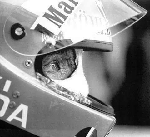 Happy birthday Niki Lauda!  Turns 68 today