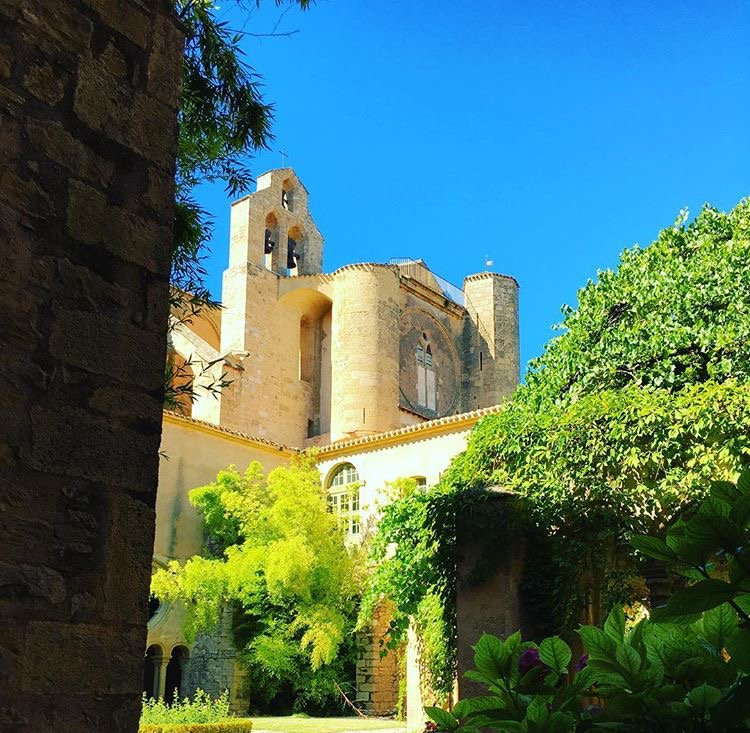 Comme un air de printemps aujourd&#39;hui à l&#39;abbaye de Valmagne #winelovers #sun #abbey #enjoy #south #France<br>http://pic.twitter.com/C8O1TmDTvi
