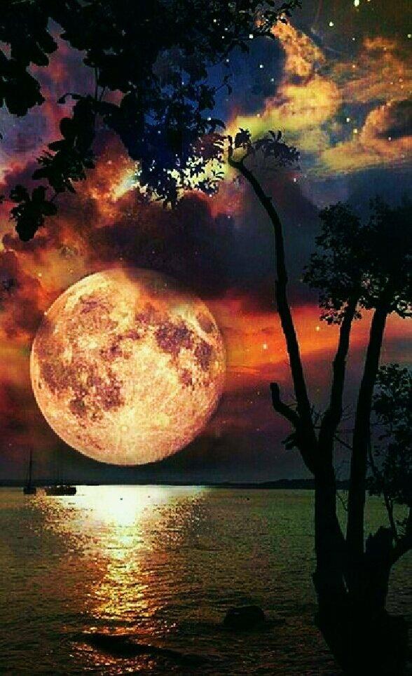 Good Night Twitter World' ✨🌉🌠 İyi Gecele...