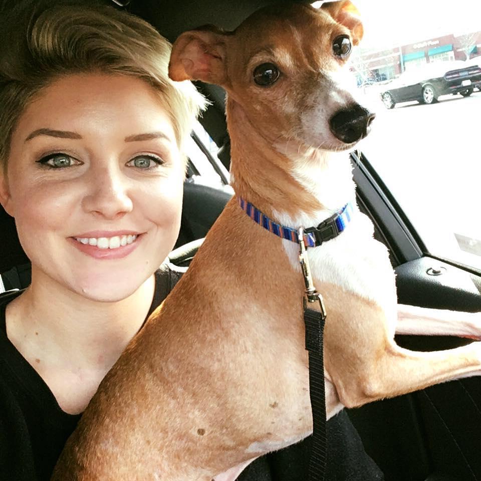 Elle retrouve son chien 7 ans après l'avoir perdu #insolite  http:// bit.ly/2kMXG2s  &nbsp;  <br>http://pic.twitter.com/zmJpf8wwbu