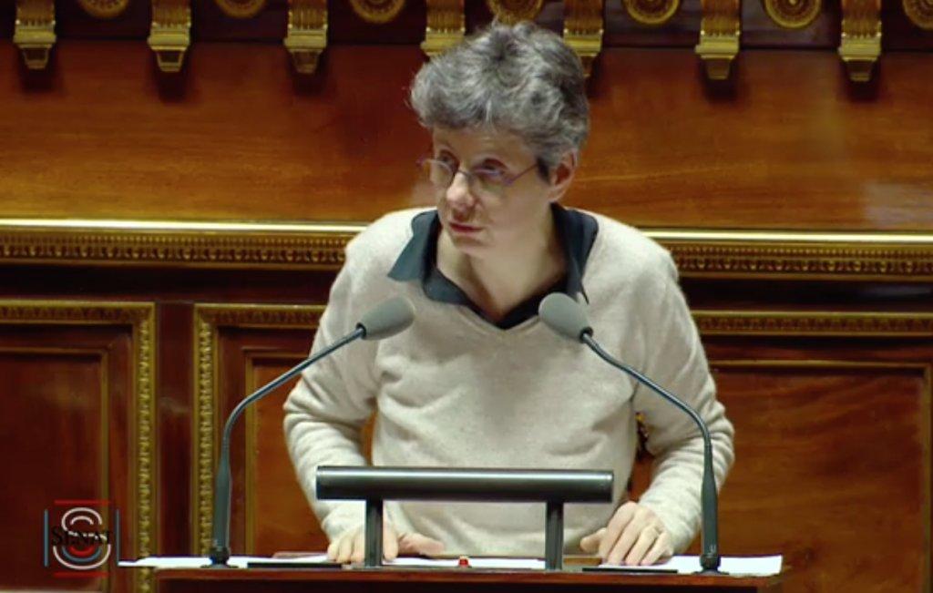 Débat sur l'application des #lois, retrouvez l'intervention de @CorinneBouchoux pour le Groupe écologiste du Sénat : https://t.co/dNU4QDkGhK https://t.co/uVQ5hd9k0s
