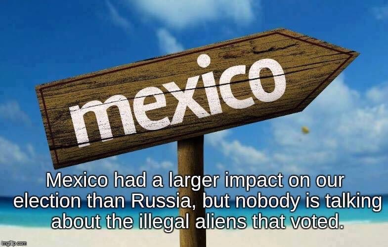 #VoterFraud #ElectionFraud Mexico hacked our elections by sending all criminal ILLEGALs Alien to vote here .@realDonaldTrump 11m+ voters<br>http://pic.twitter.com/xkxHIL7QDP