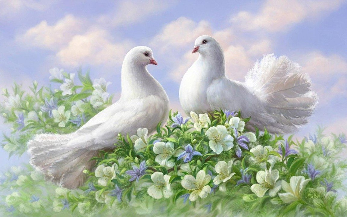Мира и любви открытки, картинки