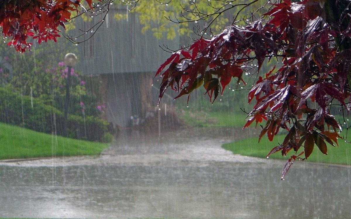Image result for poovar island raining