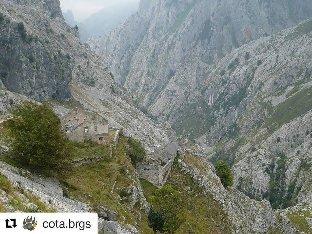 Los collaos. #Repost @cota.brgs with @repostapp ・・・ #poncebos #posadadevaldeon #cain #picosdeeuropa #rutadelcares #…<br>http://pic.twitter.com/FbaLDqwaDQ