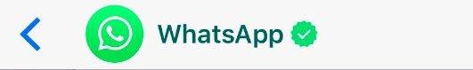 Whatsapp con cuentas verificadas ? 😱🙄 #whatsapp #WhatsappStories https...