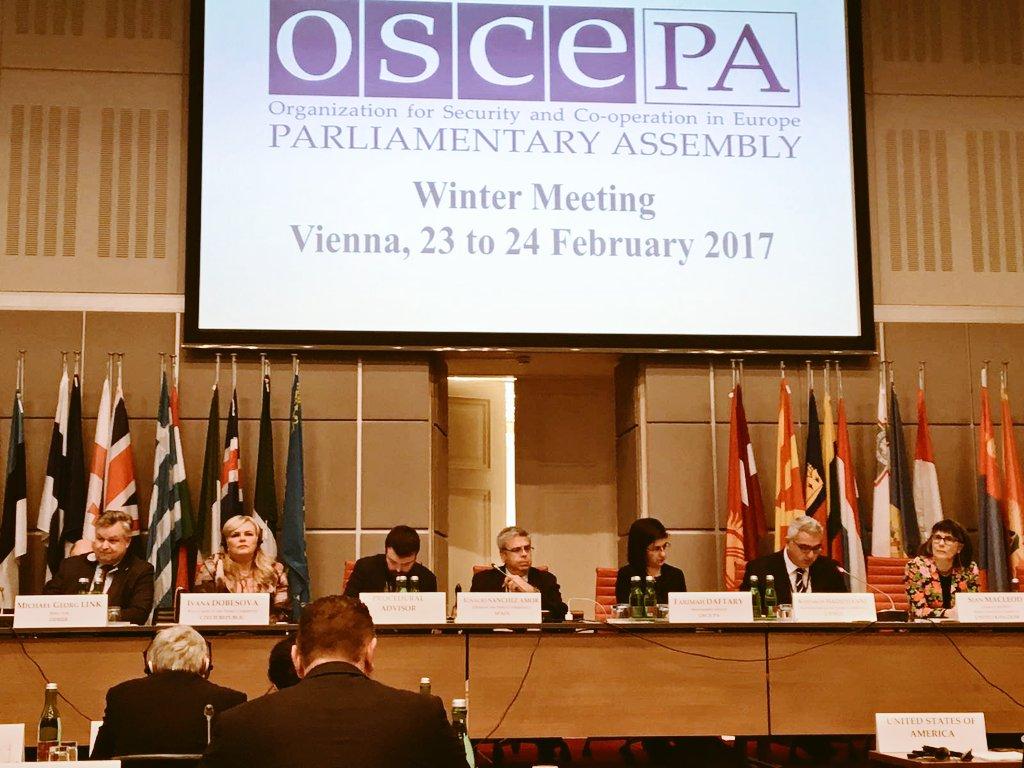 Comissió de Drets Humans i Estat de Dret de la @oscepa presidida per @NachoSAmor, portaveu d&#39;Exteriors d @gpscongreso #Viena @Congreso_Es<br>http://pic.twitter.com/GtySTTFoqJ