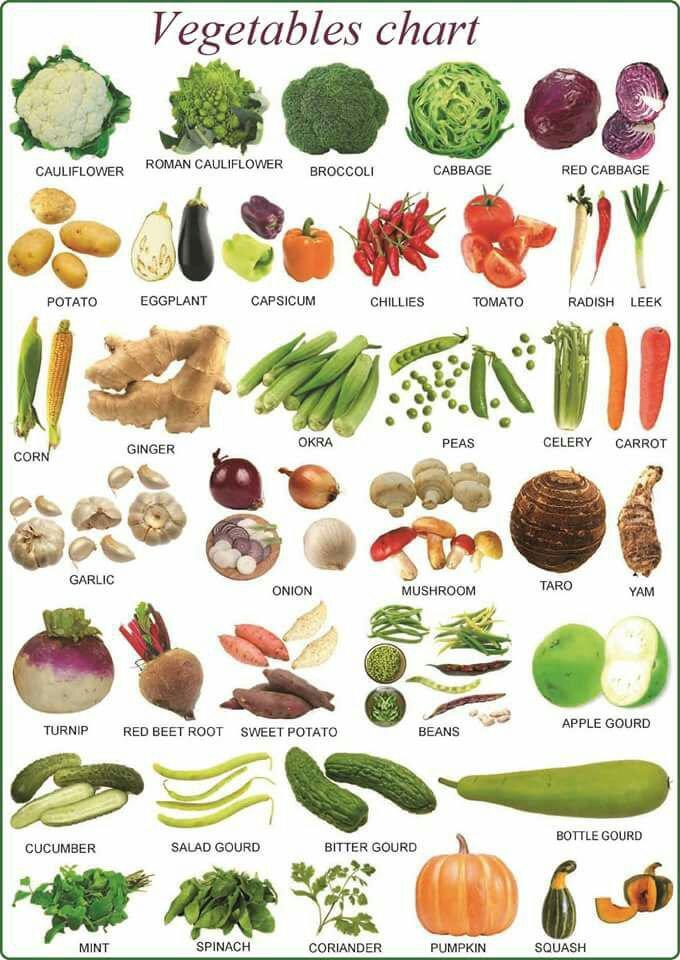 سماء أشهر الخضروات 💫