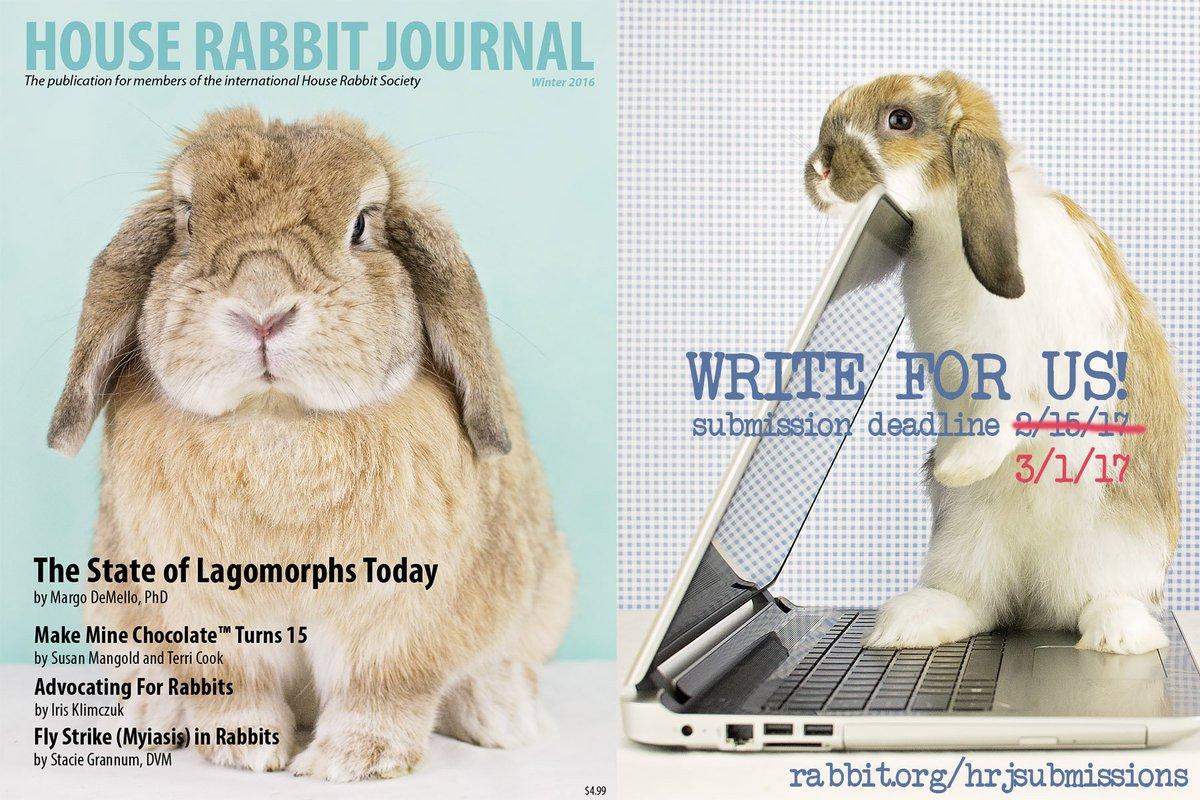 House Rabbit Society (@Houserabbit) | Twitter
