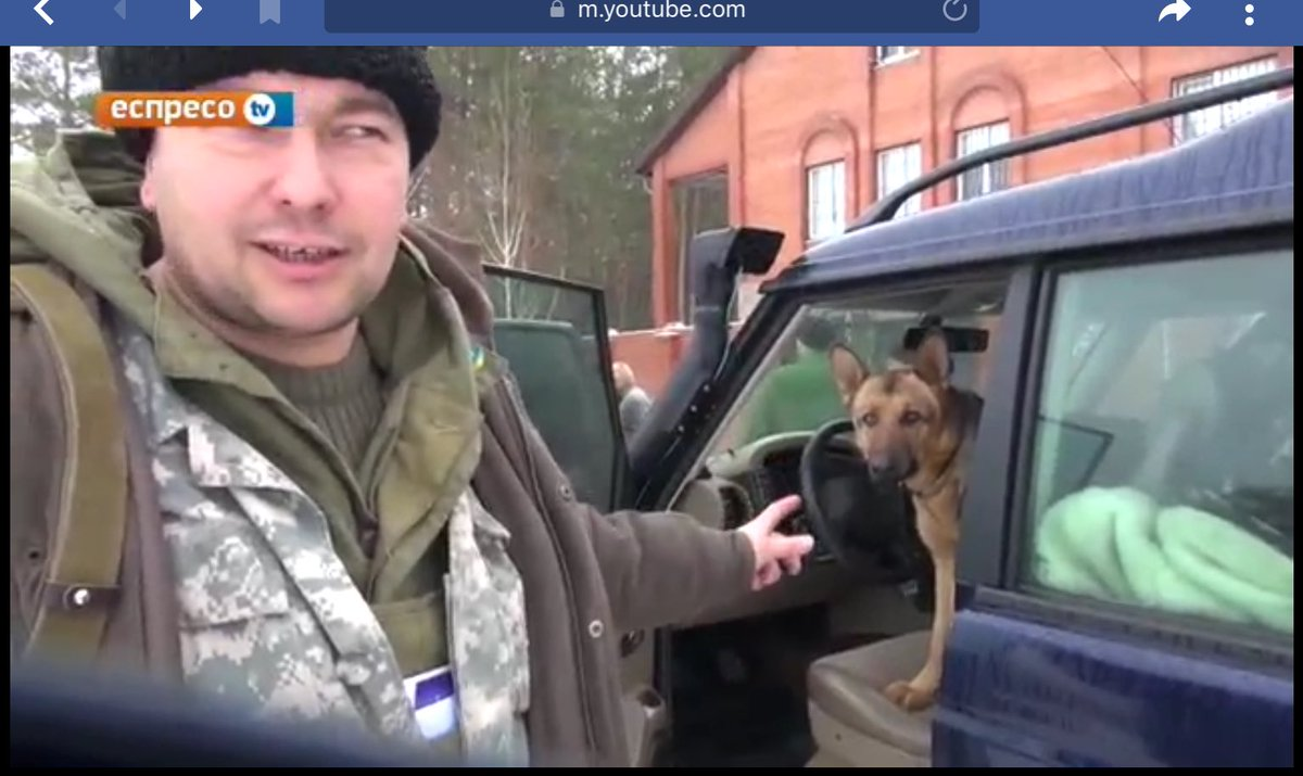 Driver  #army #Ukraine #cats #war #soldier #cat #freedom #pet #pets