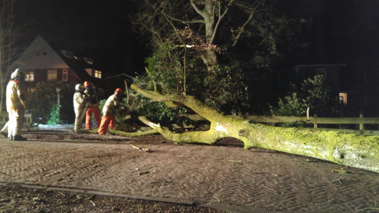 Teruglezen: storm leidt tot overlast in provincie utrecht ...