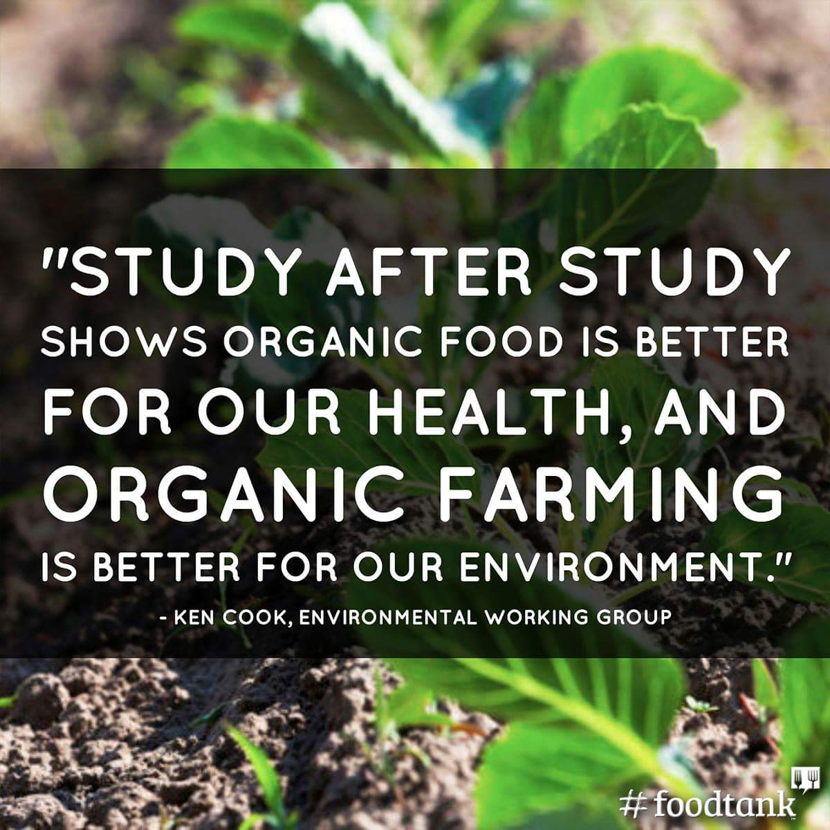disadvantages of organic foods and organic farming Advantages of local food organic and  organic & quality foods ensure our farmer fresh produce is kept at the optimum temperature  organic and quality foods.