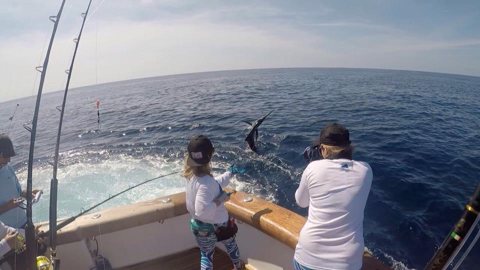 Los Suenos, CR - Geaux Fly released 9 Sailfish.