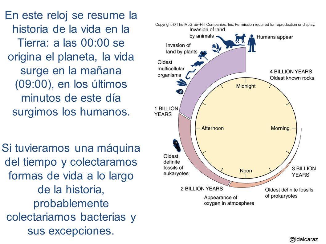La vida en este planeta, a lo largo de su historia, son las bacterias y sus excepciones  #microMOOCSEM2 https://t.co/lgk5kgWICN