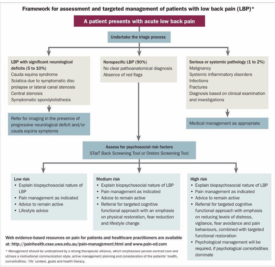 pain management for patients with acute or Abstract severe abdominal pain is a hallmark of acute pancreatitis (ap) ap-associated pain is often described by patients as a deep and penetrating type of pain with acute onset and without any prodrome.
