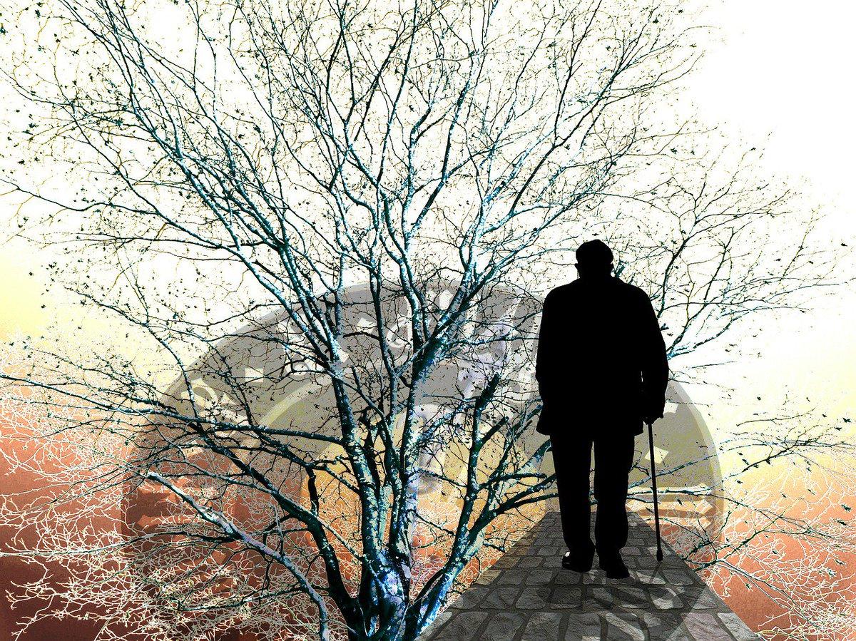 Iperglicemia Cervello e Alzheimer
