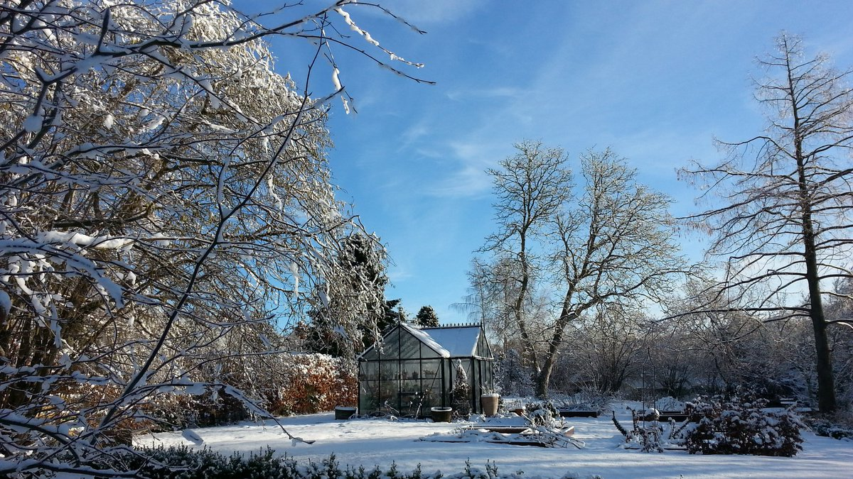 The first real snow this year - we had lots of it last night #snow #WinterWonderland #greenhouse @andinsky @confusionrains<br>http://pic.twitter.com/LKONGZ6gNT