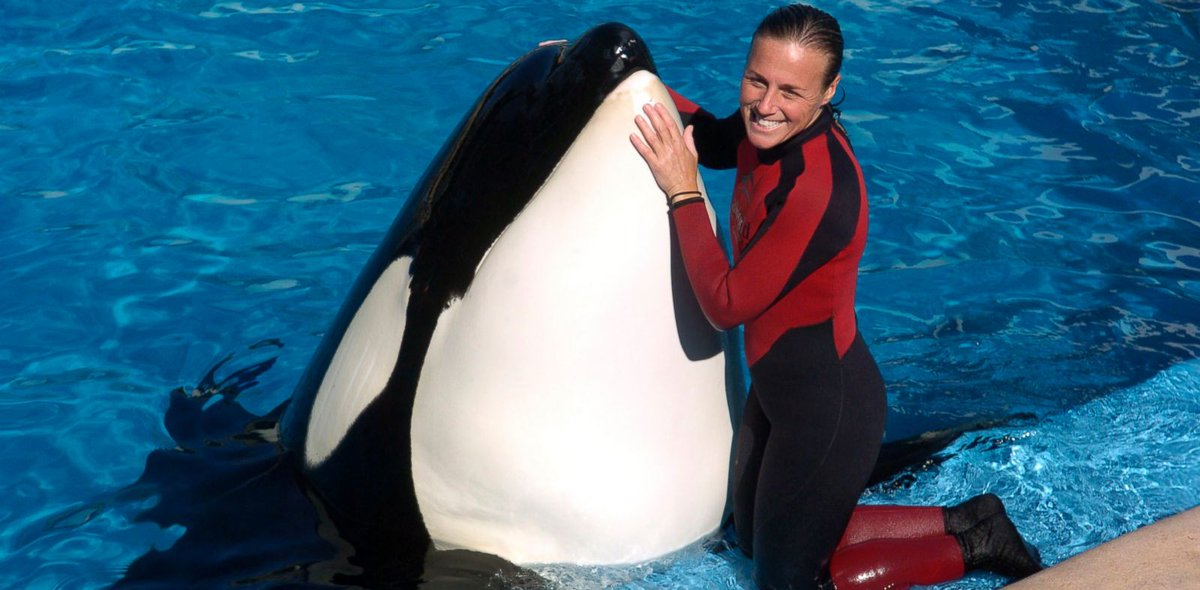 It has been 7 years since Dawn Brancheau passed away. Learn more about Dawn in @blackfishmovie: https://t.co/tTUwQpNeW0 https://t.co/hCWiIMvspx