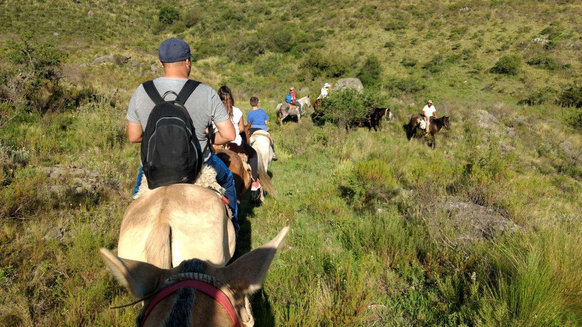 #Cabalgata por la Pampa de Olaén. +info:  http://www. turismolafalda.gob.ar  &nbsp;    #SierrasDePunilla @LaFaldaTurismo #Córdoba #Verano2017 @LaFaldaTurismo<br>http://pic.twitter.com/qSAAO8fEXL
