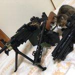 銃を並べて写真を撮ろうとすると必ずこいつが入ってくる。 pic.twitter.com/MomagH…