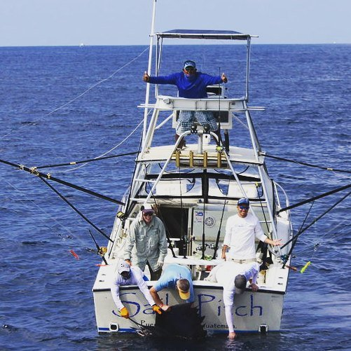 Guatemala - Sails Pitch went 8-14 on Sailfish.