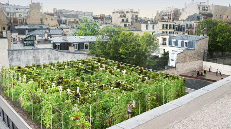 CARTE. Jardins et cultures... Des start-ups pour rendre Paris plus vert |  http:// france3-regions.francetvinfo.fr/paris-ile-de-f rance/jardins-cultures-start-ups-rendre-paris-plus-vert-1202361.html &nbsp; …  #environnement #SIA2017<br>http://pic.twitter.com/XyfCe80WKn
