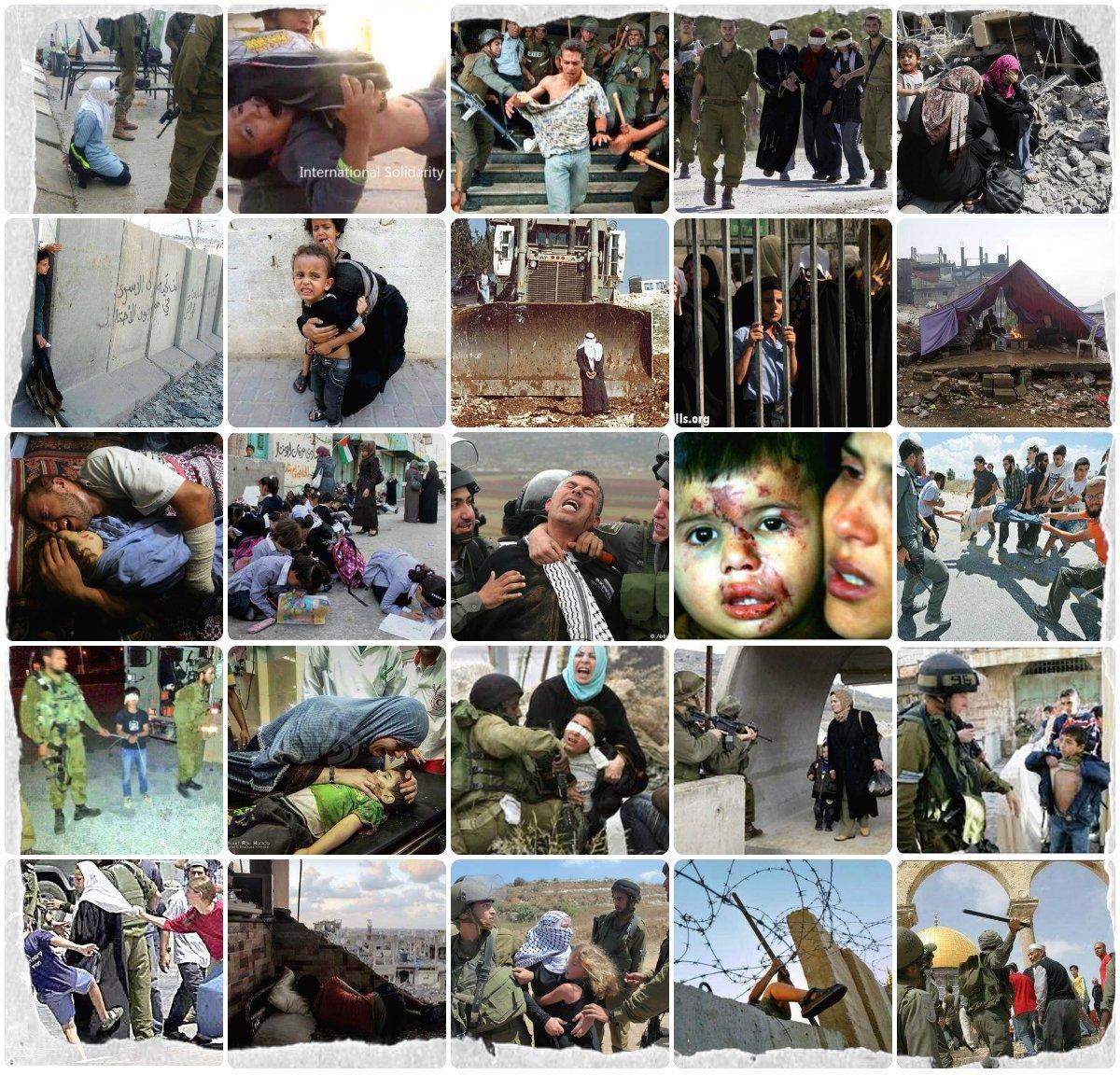 #Palestine &gt; Plus de visas pour Human Rights Watch jugée trop &quot;partiale&quot;. Les témoins oculaires sont gênants dans toute occupation. #israël <br>http://pic.twitter.com/5mddgnFNsz
